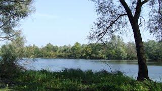 Черкассы Украина Лес природа отдых река Рось мои любимые места