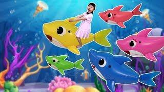 아기상어랑 놀아요! 핑크퐁 상어가족 멜로디 어항세트 놀이 | 어린이 율동동요 | 숫자공부
