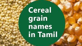 Basic Level - Part 3 - Cereal grain Names