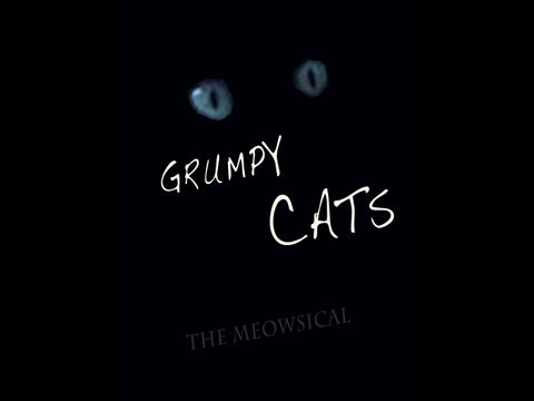 Grumpy Cats: The Meowsical