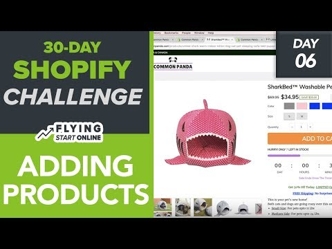 Adding Products To Shopify Store! Drive More Sales With These HACKS! - (Day 6/30) #Bizathon3