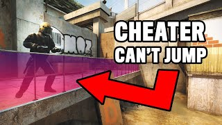 CSGO Cheaters trolled by fake cheat software 3