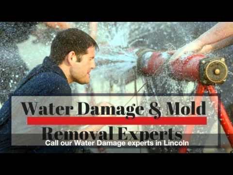 Water damage Restoration Lincoln and Mold Remediation  Call or text 917-677-5308