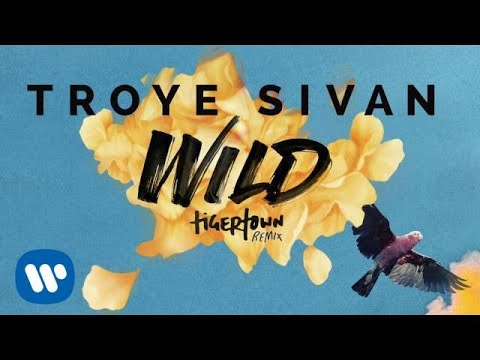 Troye Sivan - Wild (Tigertown Remix)