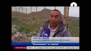 Жители окраин Чолпон-аты вынуждены соседствовать со зловонием