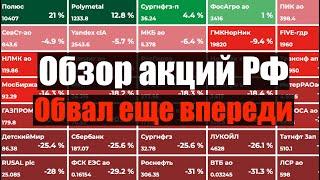 Обвал российского рынка впереди. Какие акции покупать на падении. Инвестиции в акции