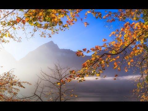 The Beautiful Switzerland - Swiss Path