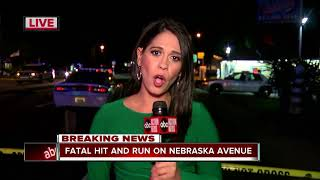 Fatal hit and run accident
