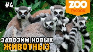 Zoo Tycoon: Ultimate Animal Collection #4 Завозим новых животных