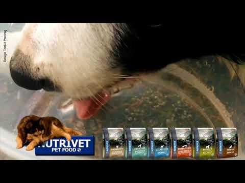 Funny dogs & NUTRIVET zdrava hrana za pse i mačke (12)