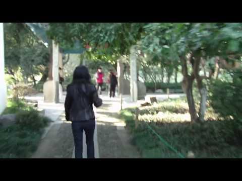 Hangzhou Vid 13