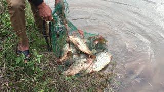 Bắt Được 20kg Cá Chép Sông Đà Trong Đêm || TVN Lai Châu