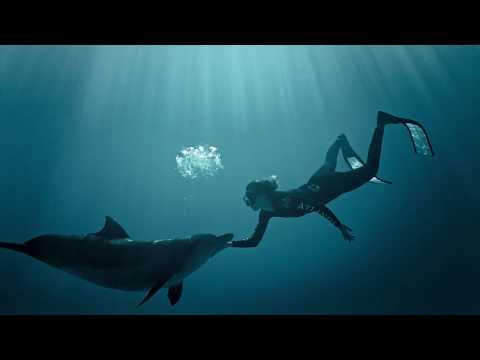 25% OFF At Atlantis Aquaventure Dolphin Bay MasterCard Offer