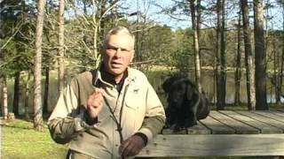 Wildrose Kennels Is In Your Backyard!