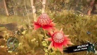 Far Cry Primal domando Dholi raro(português br)
