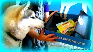 Treat! Toys!  Petbox Time! Coupon Code!