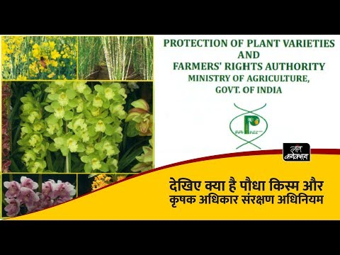 Protection of plant varieties and farmers rights authority