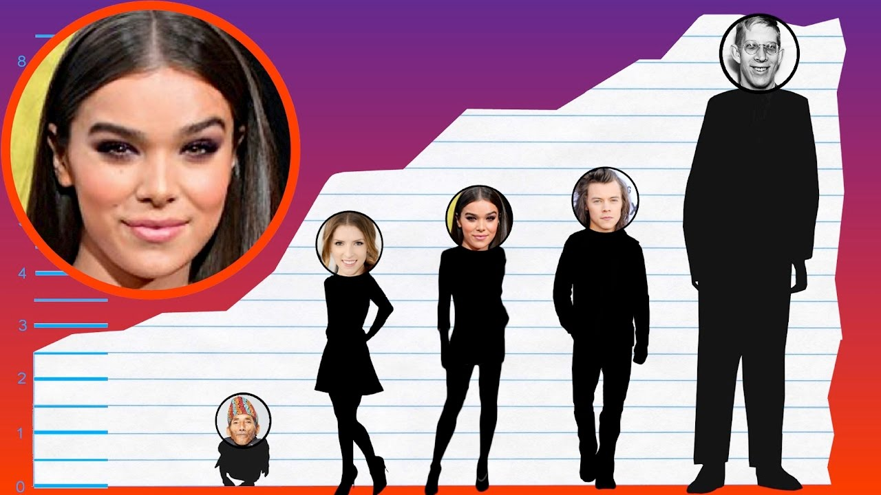 How Tall Is Hailee Steinfeld Height Comparison