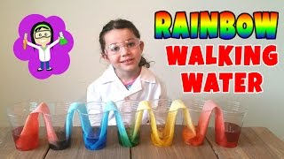 Rainbow Walking Water Easy Science Projects Experiments for Kids