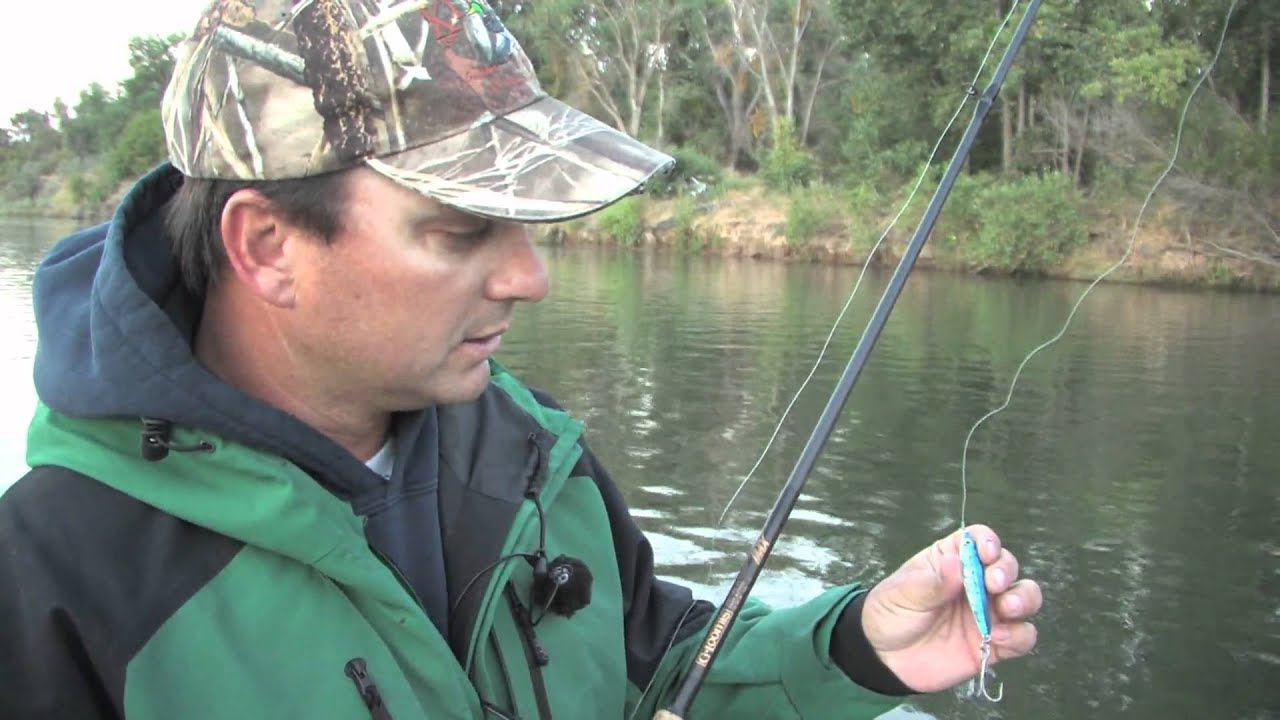 Feather river salmon sac r stripers this week on for Feather river salmon fishing