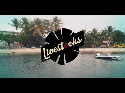 Livestocks - Lily (Official video)