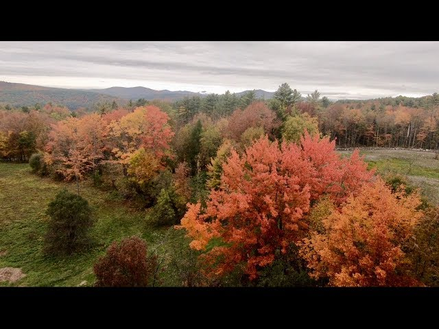 Fall Foliage Road Trip New Hampshire and Vermont & Farm Drone Footage