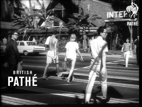 A Trip To Honolulu   (1966)