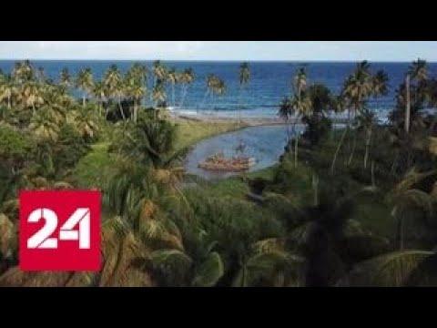 От туризма до высоких технологий: Гренаде и РФ есть чем поделиться друг с другом - Россия 24