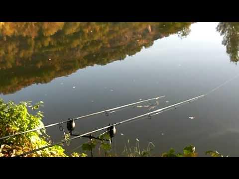 River Lot Carp Fishing