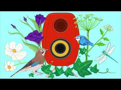 The Liquid You by Ben Norris - BBC Radio 4
