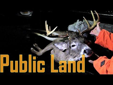 NEW YORK Public Land Mountain BUCKS Deer Hunting