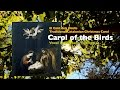 watch he video of Carol of the Birds  El Cant dels Ocells English vocal Marlane Tubridy 2015