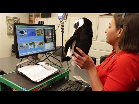 Distance Learning: Virtual Programs | California Academy of Sciences
