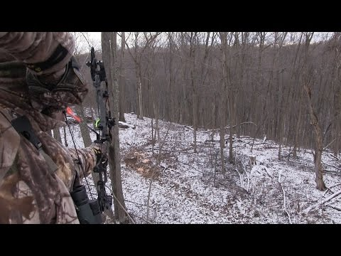 Ohio Deer Hunting: December Action