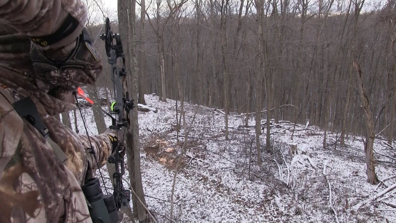Ohio Deer Hunting: December Action - YouTube