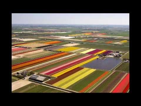 Niederlande Schöne Landschaften - Hotels Ferien Unterkünfte Yachtcharter