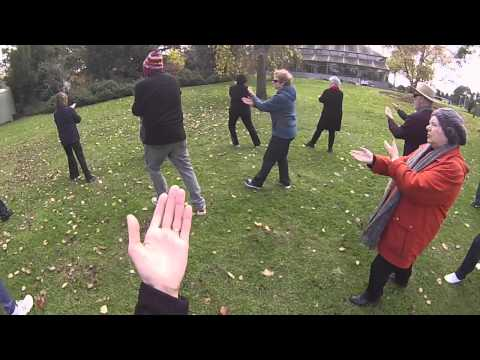 Winter Tai Chi Park Lesson at Central Park in East Malvern