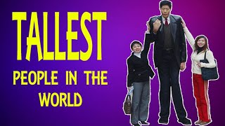Tallest people in the World( Country wise) | Worth Sharing Videos