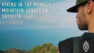 Hiking In The Monkey Mountain Jungle In Sayulita