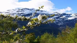 Aleksey Beloozerov - I Run To You (Juventa Remix) [HD]