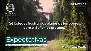 Expectativas - Meditaciones del libro de Salmos Nº8