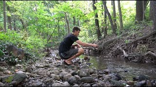 Fishing a TINY Urban Creek For Whatever Bites
