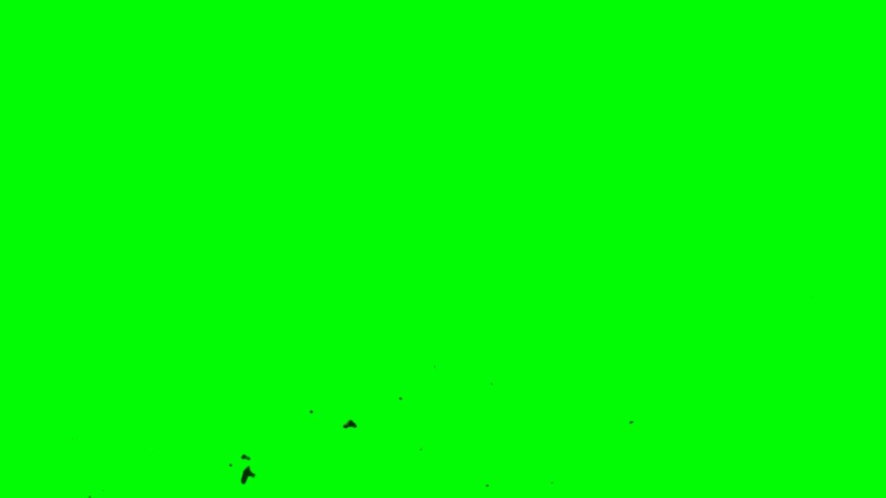 خلفية كروما خضراء للمونتاج