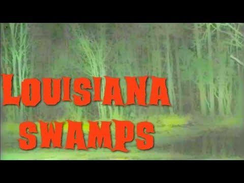 Louisiana Swamps - Bayou Urban Legend