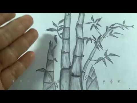 HOW TO DRAW BAMBOO/ Vẽ Cây Tre và Búp Măng Non đơn giãn bằng Bút Chì