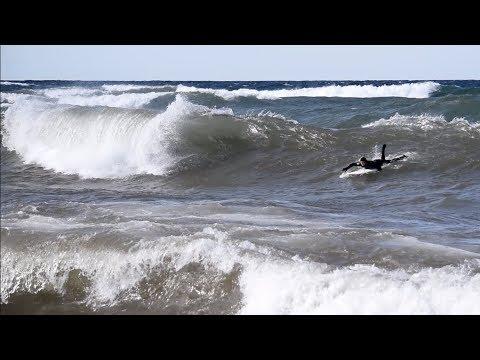 We Found EPIC Surf In MICHIGAN!