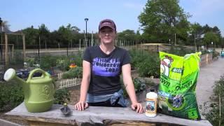 Gardening Tips: Choosing the Right Fertilizer