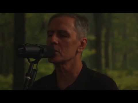 Robert Forster - Let Me Imagine You (official)