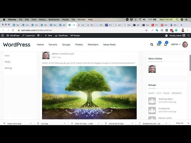 Creating Poll Activity  Create Online BuddyPress Powered WordPress Social Network Intranet Community