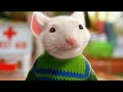 Stuart Little (Trailer español) Videos De Viajes